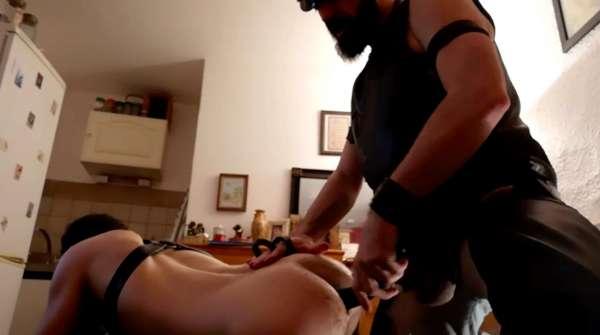 Dog Training d'une lope par master cuir